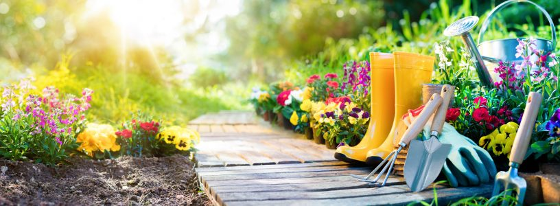 7 Great Gardening Quotes to Make You Chuckle