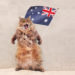 10 Australian Quotes and Expressions That Will Make You Smile